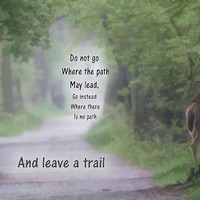 Leave A Trail by Dan Sproul