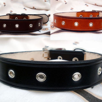 "Leather dog collar, 1"" wide, large dog collar, with eyelets, black leather collar, brown dog collar, tan leather collar"
