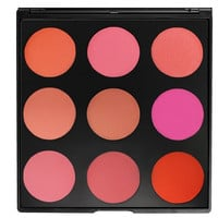 9B - THE BLUSHED BLUSH PALETTE