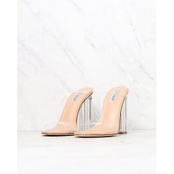 Transparent Ankle Strap Chunky Block High Heel