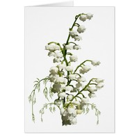 White lily of the valley flowers card