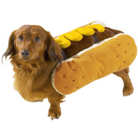 Hot Diggity Dog Costume