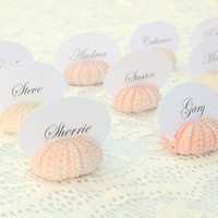 25 Natural Pink Sea Urchin Shell Place Wedding Card Name Holders - Natural Eco Beach Reception Table Chic Decor - Guest Escort Card Favor