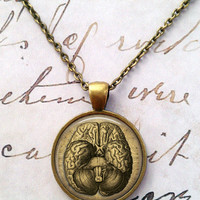 Anatomy Necklace, Science, Anatomical, Brain, Big Bang Theory, Steampunk T106