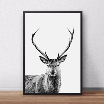 Sale!!! Deer Print, Forest Animal Wall Art, Nursery Printable, Baby Woodland Print, Deer Poster, Nursery Decor, Deer, Woodland Nursery