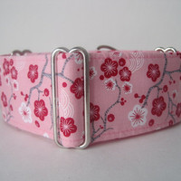 "Pink Martingale Collar, 1.5"" Martingale Collars, Cherry Blossom Martingale Collar, Pink Dog Collar, Sighthound Collar"