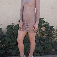 Sexy Taupe Long Sleeve Mesh Dress Sizes S-M-L NEW!