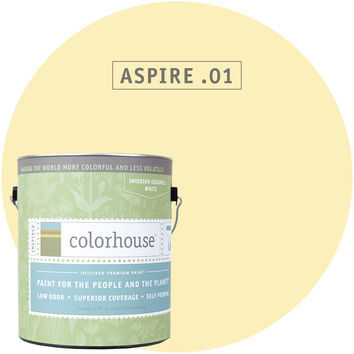 Paint by Colorhouse ASPIRE .01