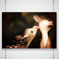 Deer Woodland Photography Print 8x12 fawn by jpgphotography