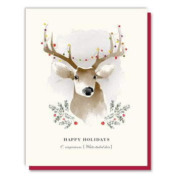 Happy Holidays Deer Boxed Set