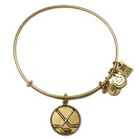 Team USA Ice Hockey Charm Bangle | Alex and Ani
