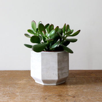 Large Octagonal Concrete Planter perfect for a Cactus or Succulent Plant // Concrete Plant Pot- Handmade