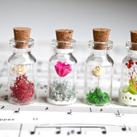 Valentine's gift handmade natural real flower glass terrarium necklace with waxed cotton cord, variety of color, message in a bottle.