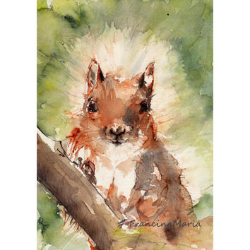 Squirrel, Watercolor Painting Animal Art Woodland giclee print forest winter acorn wild life