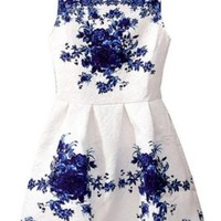 Vintage Sleeveless Chinese White and Blue Porcelain Floral Printed Dress
