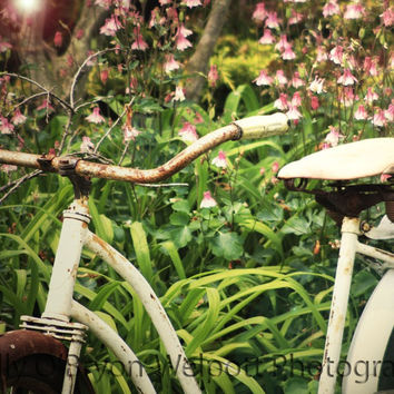 Vintage Bicycle Photography - Pink Green Shabby Chic Decor