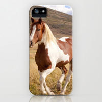 Pinto Horse photograph iPhone & iPod Case by Apples and Oats Photography