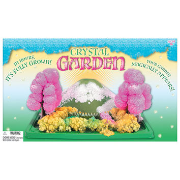 Grow Your Own Crystal Garden