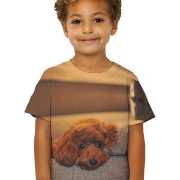 Kids Chocolate Toy Poodle Stare
