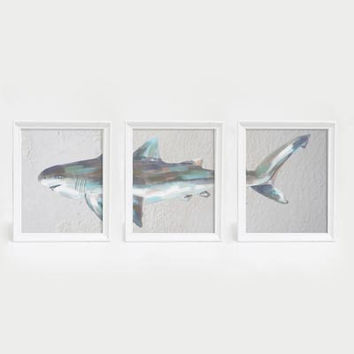 Tiger Shark Triptych Wall Art Print