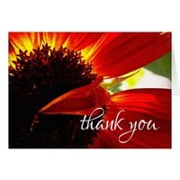 """Thank You"" Red Orange Daisy Photo Blank Inside Card"