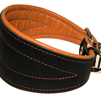 Real Leather Extra Wide Padded Tapered Dog Collar Glossy Black Greyhound Saluki Deerhound Lurcher Whippet Dachshund