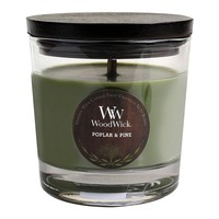 WoodWick Poplar & Pine 10 1/2-oz. Jar Candle (Green)