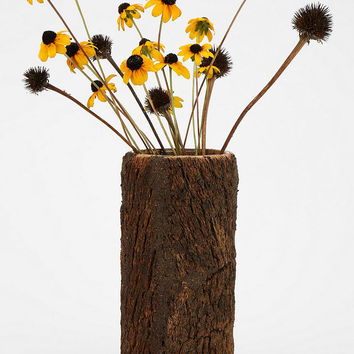 Magical Thinking Bark Vase - Urban Outfitters