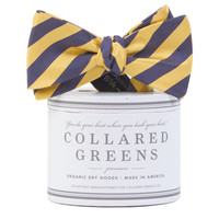 The Collegiate Bow in Navy/Gold by Collared Greens