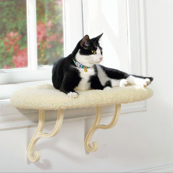 Best Cat Perch Products on Wanelo