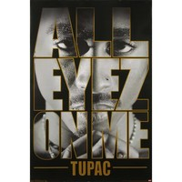 Tupac Domestic Poster
