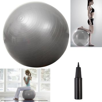 "Yoga Ball 25"" 65cm Exercise Gymnastic Fitness Pilates Balance w/Air Pump Silver"
