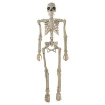 Halloween Poseable Mini Skeleton - Hyde and Eek! Boutique™