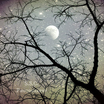 Starry night photography. moon. tree branches. surreal sky. silver blue purple. starry art print. night time home decor. dreamy nature scene
