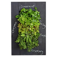 "24"" Chalkboard Wall Mounted Planters, Seeds & Growing Kits"