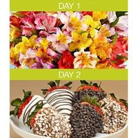 100 Blooms of Peruvian Lilies with 6 Gourmet Dipped Strawberries