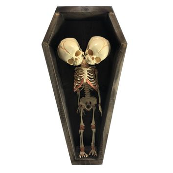 Economy Conjoined Siamese Twin in Coffin