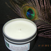 Smoke and Odor Eliminator All Natural Soy Candle in Travel Tin