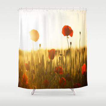 Poppies in the Sun Shower Curtain by Aloke Photography & Design