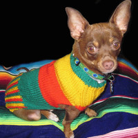 Dog jumper,  Mikos  Custom made  dog jumper,   cat sweater, Hand knitted pet clothes. dog clothes in bright yellow red and green.