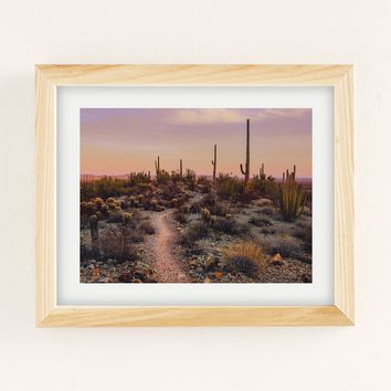 Brian Stowell Sonoran Sunset Art Print | Urban Outfitters