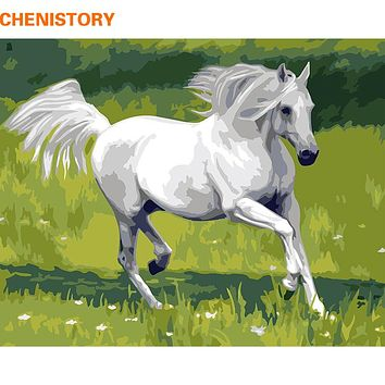 CHENISTORY White Horse DIY Digital Painting By Numbers Unique Gift Home Wall Art Picture Hand Painted Oil Painting Wall Artwork