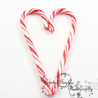Heart Candy Cane 5x7 Christmas Fine Art Photography Print red white stripes heart holiday home decor wall art