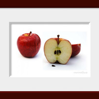 Apples PRINTABLE INSTANT DOWNLOAD food photography  -  kitchen decor food wall art