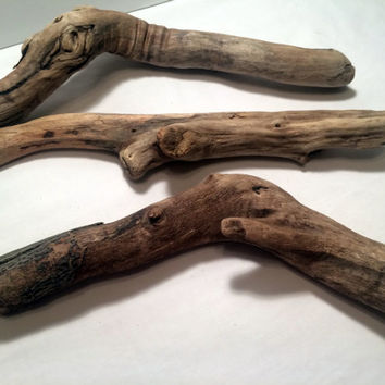 Sculptured Driftwood Photography Props Aquarium Driftwood Craft Supplies DIY Beach Decor Ecofriendly Lake Erie