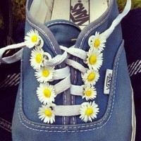I dream of Daisies!