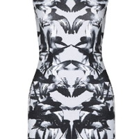 When Doves Cry Dress | Gray Bird Print Winged Bodycon Dresses | Rickety Rack