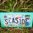 SEASIDE -OOAK  License Plate Art, Custom Home Decor, Up-cycled Art, Unique Gift