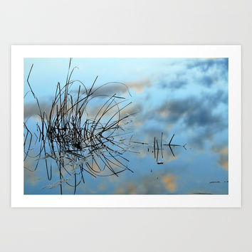 graphics in nature Art Print by Guido Montañés
