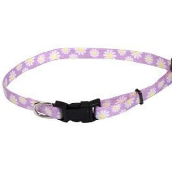 """DOG COLLARS & LEADS - FASHION - 6622 5/16"""" LIL PALS ADJUSTABLE COLLAR - DAISIES MULTICOLOR 12"""" - COASTAL PET PRODUCTS, INC. - UPC: 76484662225 - DEPT: DOG PRODUCTS"""